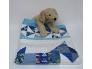 2104 Baby quilt Puppy 2b.jpg