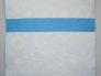 2009 Sinine lapitekk 01c.jpg